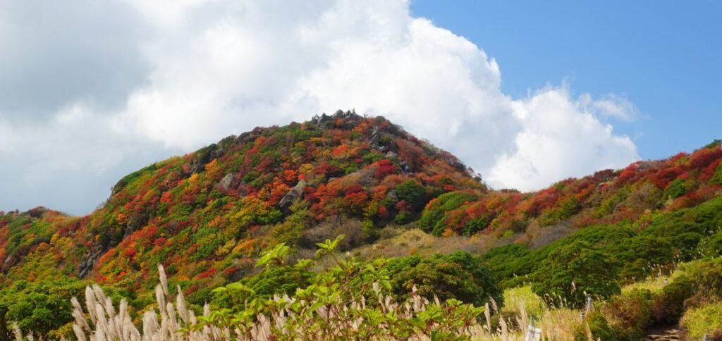 沓掛山の紅葉